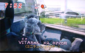 08_20車.jpg