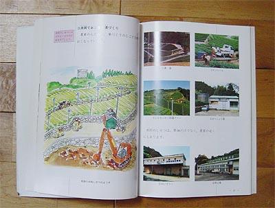 03_22藤枝茶畑頁.jpg